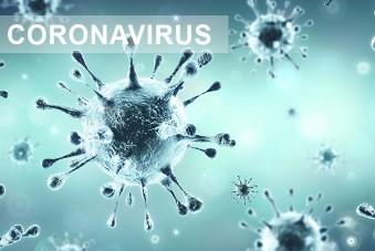 Epidémie de Coronavirus Covid 19 - Rheno mobilisé
